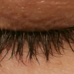 Fysiko Grow Natural Eyelashes Review! #Fysikobeauty