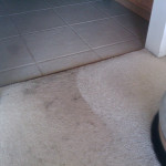 The Benefits of Eco-Friendly Carpet Cleaning!