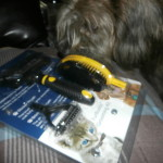The Amazing FurBuddy Pet Groomer Kit! #FurBuddyPetBrushKit